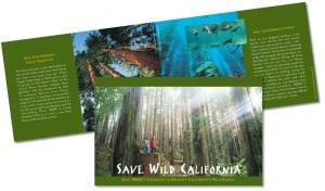 Save Wild California