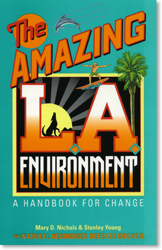 Amazing LA Environment cover